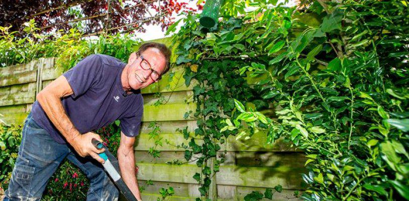 De tuinruimers over kant-en-klaar hagen