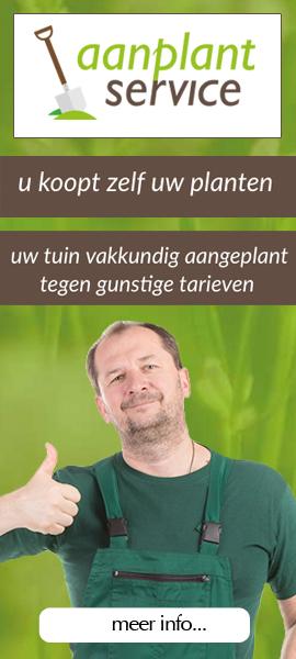 Aanplantservice