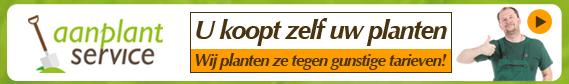 Aanplantservice banner