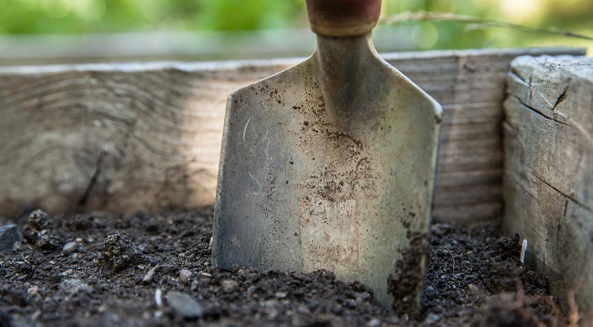 Eenvoudig aan te planten