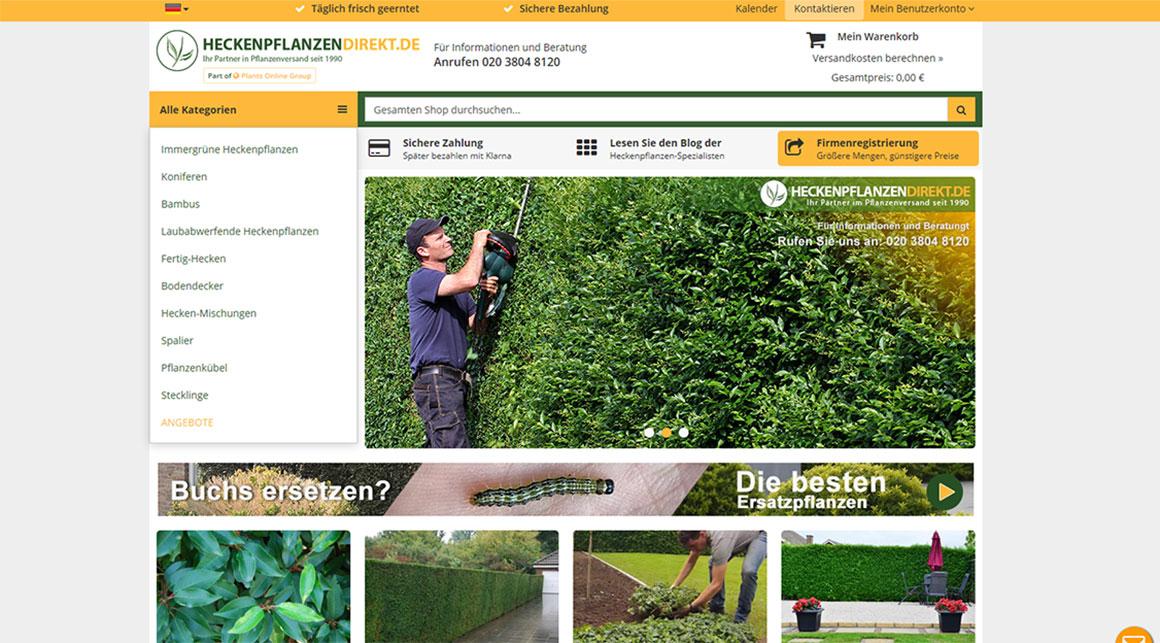 Wo kann ich meine Heckenpflanzen online kaufen?