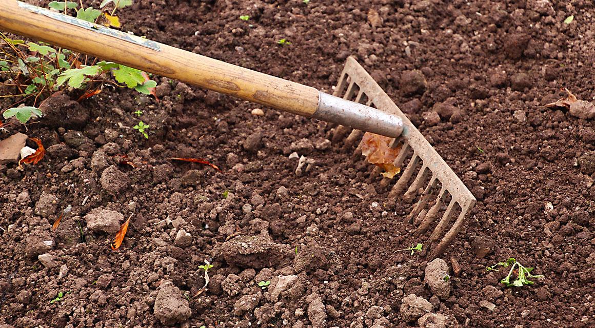 Zorg voor losse aarde op de bodem van de plantgeul