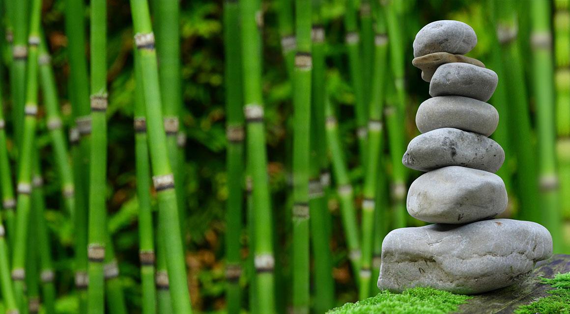Online bamboe kopen die niet woekert