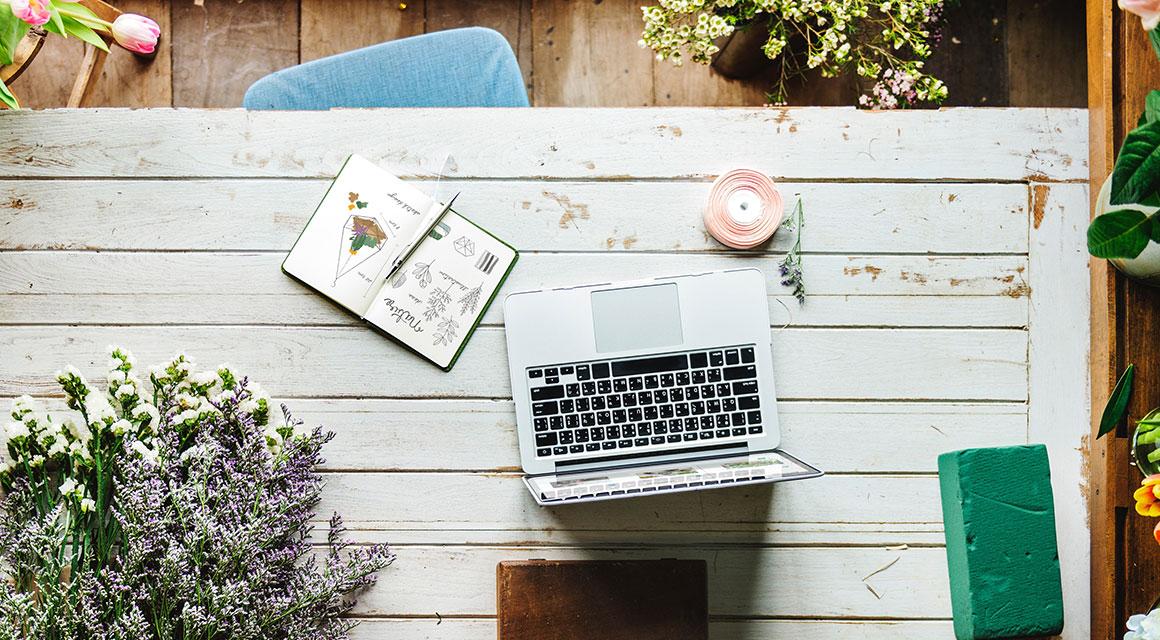 Immer alle Informationen Ihrer Heckenpflanzen online nachlesen