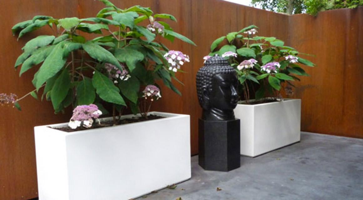 Prachtige planten en tuinaccessoires kopen