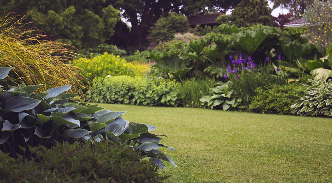 Houd uw tuin in optimale conditie