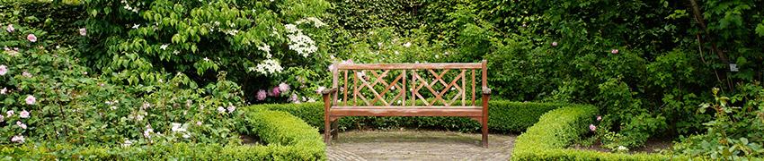 Haag & tuin harmonieus ontworpen