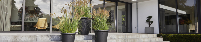 Plantenbakken sfeerfoto tuin